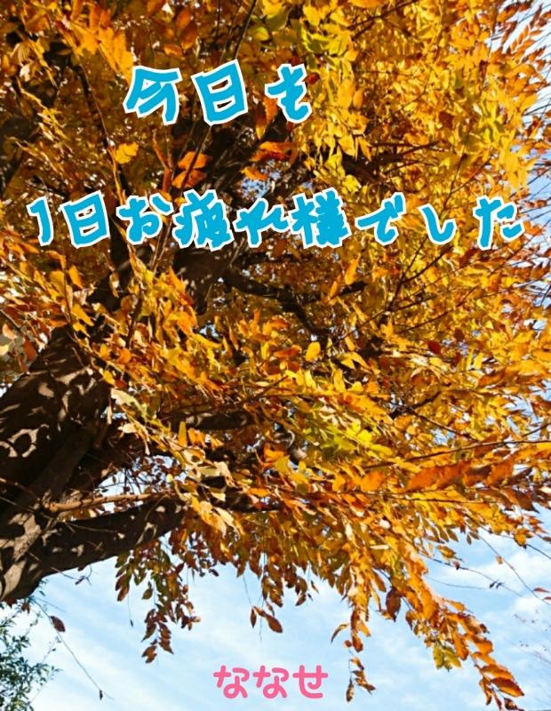 完熟ばなな立川店♪ななせ♪『風の中のぱしゃり』